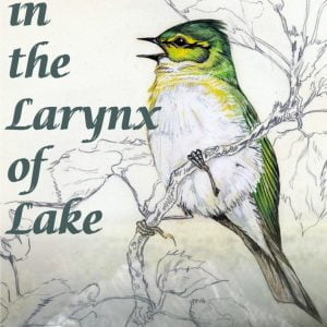 Alto in the Larynx of Lake by Tomisin Olusola Martins